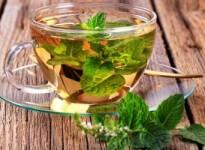 Чай с мятой при беременности: польза и вред напитка