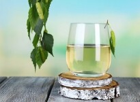 Березовый сок, отвар и деготь при беременности: вред или польза?