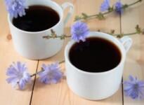 Цикорий при беременности: заменяем кофе полезным напитком