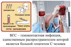 Гепатит B при беременности