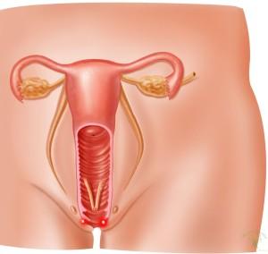 При беременности цервикальный канал закрыт что это значит