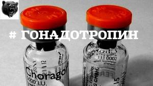Хорионический гонадотропин при беременности