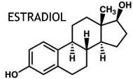 гормон эстрадиол